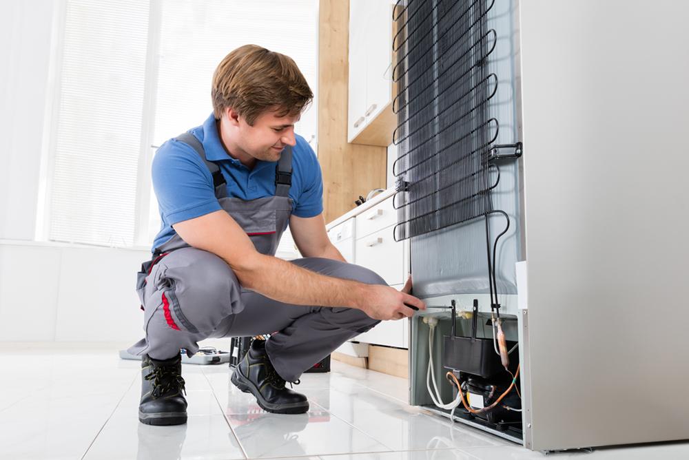 Riparazione frigoriferi como cemar elettrodomestici for Frigo no frost non raffredda